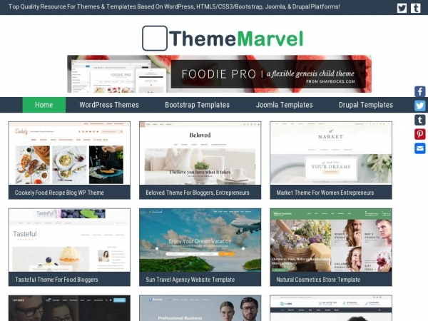 thememarvel.com